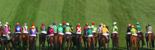 GRAND NATIONAL: HOW TO PICK THE WINNER