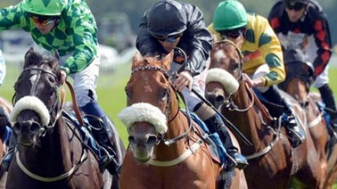 Racing Tips: Ready for a Gray day at Southwell
