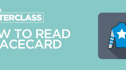 Masterclass: How to read a horse racing racecard