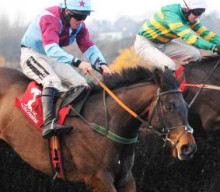 The Voice of Value: Let Westerner Point the way to the winning post at Aintree
