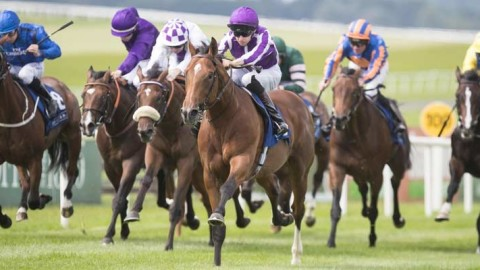 Alan Thomson's Racing Tips: Chain of command at Yarmouth