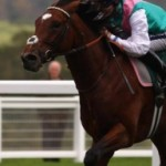 Profile photo of theamazingfrankel