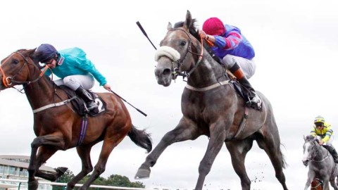 Alan Thomson's Racing Tips: Soldiers ready for battle at Chelmsford
