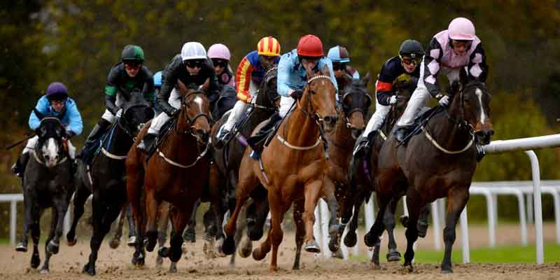 Alan Thomson's Tips: Dreaming of glory at Chelmsford - MrFixitsTips
