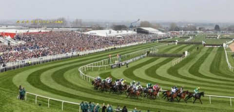 Johnb's Tips: Grand National 100-1 chance