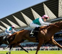 The Voice of Value's Racing Tips: Jamie Spencer the man to follow at Ascot