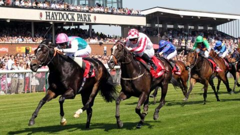 Alan Thomson's Racing Tips: Guildhall can muck in for glory
