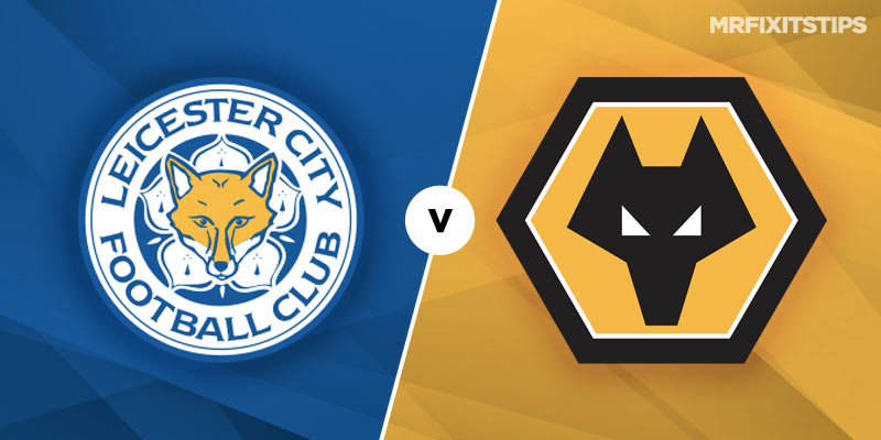 wolves vs leicester city - photo #4