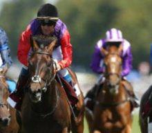 Alan Thomson's Racing Tips: All things Brighton beautiful