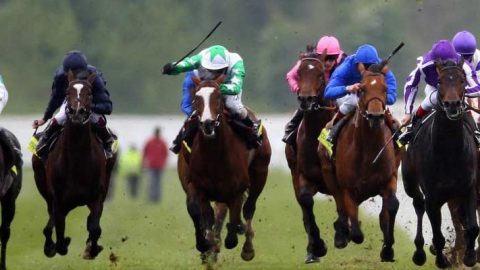 Alan Thomson's Racing Tips: Catch a speedy Uber at Newmarket