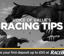 Voice of Value's Racing Tips: Magoo can do it again on heavy ground