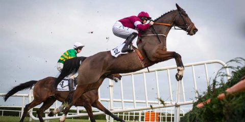 Can Notebook make a charge in the Arkle Chase?