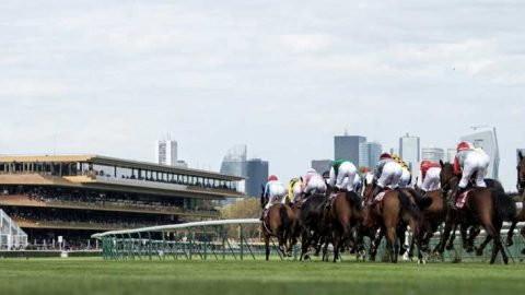 Racing: French toast a return to action on Monday