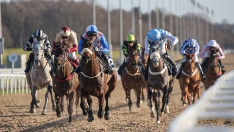 Racing Tips: Horse racing returns on Monday at Newcastle
