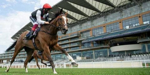 The Investec Oaks Tips: Top Two Can Be Opposed
