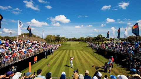 Golf Tips: Arnold Palmer Invitational Betting Preview & Tips