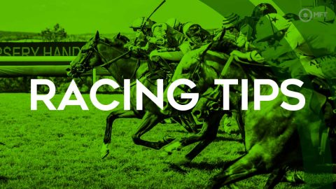 Racing tips: Reverand Jacobs to capitalise on low hurdling mark