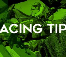 Racing tips: Temper Trap has been primed for the same race he won last year