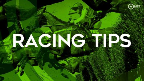 Racing tips: Harry Fry goes for back to back wins in the same race at Uttoxeter